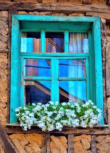 Free Blue, Green, Window, Flower Stock Photo - 124771830