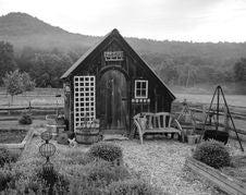 Free Black And White, Monochrome Photography, Monochrome, Tree Stock Photos - 124772043