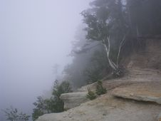 Free Fog, Hill Station, Mist, Tree Royalty Free Stock Photography - 124772147
