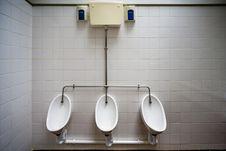 Free Toilet, Urinal, Plumbing Fixture, Bathroom Royalty Free Stock Photos - 124772238