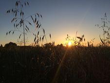 Free Sky, Ecosystem, Sun, Sunrise Royalty Free Stock Image - 124772496