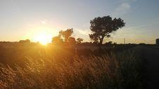 Free Sky, Field, Sun, Sunrise Stock Photo - 124939050