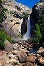 Free Yosemite Falls, Yosemite National Park Royalty Free Stock Image - 1251906