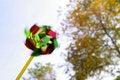 Free Pinwheel Royalty Free Stock Photo - 1257455