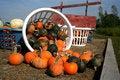 Free A Wagon-full Of Pumpkins Stock Photos - 1257673