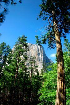 El Capitan, Yosemite National Park Royalty Free Stock Photography