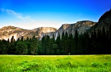 Free Yosemite National Park, USA Royalty Free Stock Image - 1251796