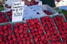 Free Strawberry Stock Photos - 1253313
