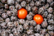 The Tomatoes In Plums Royalty Free Stock Photography