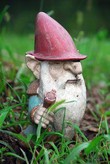 Free I Gnome Alone Royalty Free Stock Photography - 1256077