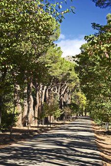 Free Morning In Park Escorial Stock Image - 1258671