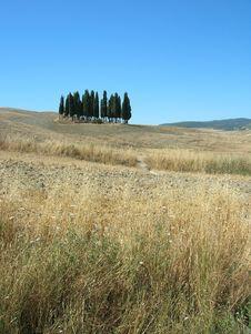 Free Tuscany Stock Images - 1258894