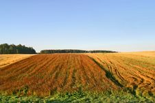 Free Agricultural Autumn Field Stock Photo - 1259870