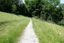 Free Path, Road, Vegetation, Nature Reserve Royalty Free Stock Image - 125016266
