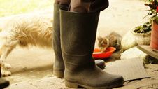 Free Footwear, Boot, Shoe, Outdoor Shoe Stock Photo - 125017000