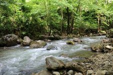 Free Stream, Water, Nature, Body Of Water Royalty Free Stock Photography - 125017257