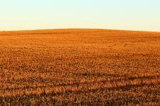 Free Field, Crop, Ecosystem, Sky Royalty Free Stock Photos - 125017318