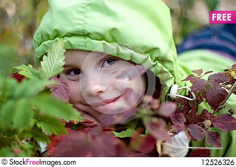 Free Smiling Little Girl Hiding Behind Leaves Royalty Free Stock Image - 12526326