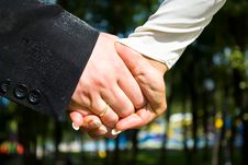 Free Hands Of Newlyweds Royalty Free Stock Photos - 12539068