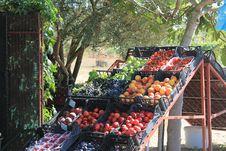 Free Produce, Local Food, Marketplace, Fruit Stock Photography - 125456862