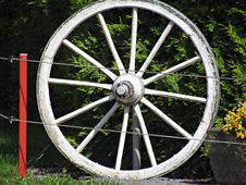 Free Wheel, Motor Vehicle, Spoke, Bicycle Wheel Stock Image - 125596551