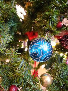 Free Christmas Decoration, Christmas Ornament, Christmas, Evergreen Stock Photo - 125840210