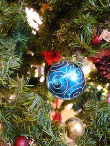 Free Christmas Decoration, Christmas Ornament, Christmas, Evergreen Stock Photo - 125840210