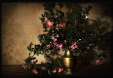 Free Still Life, Still Life Photography, Flora, Painting Royalty Free Stock Photography - 125841047