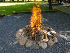 Free Fire, Tree, Campfire, Grass Royalty Free Stock Image - 125934336