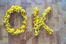 Free Yellow, Flower, Lei Royalty Free Stock Photography - 125934707