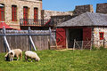 Free Louisbourg Farm Royalty Free Stock Image - 1265226