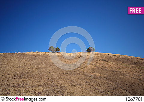 Free Lonely Trees In The High Desert Stock Image - 1267781
