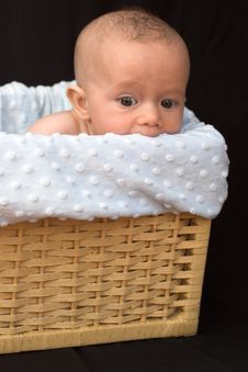 Free Baby In Basket Royalty Free Stock Image - 1260976