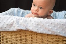 Free Baby In Basket Royalty Free Stock Images - 1261049