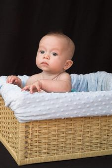 Free Baby In Basket Stock Image - 1261251