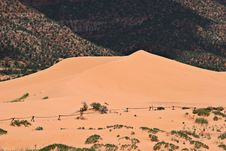 Free Coral Pink Sand Dunes Stock Photos - 1262113