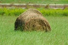 Free Hay In Meadow Stock Photo - 1262900