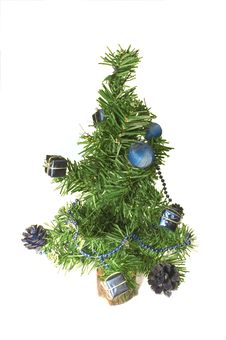 Free Fir Tree Stock Images - 1263404