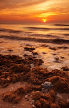 Free Beach In The Evening Stock Photos - 1267003