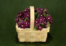 Free Flower Basket Stock Images - 1267474