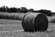 Free Bale Of Hay Stock Images - 1268424