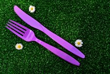 Free Flower, Purple, Grass, Flora Royalty Free Stock Images - 126103689