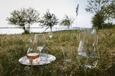 Free Clear Glass Pitcher And Wine Glass On Grass At Daytime Stock Images - 126175864