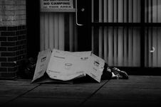 Free Grayscale Photo Of Human Lying On Ground Covered Of Cardboard Box Royalty Free Stock Photo - 126175945