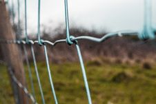 Free Selective Focus Photography Of Gray Chain Link Fence Royalty Free Stock Photo - 126176395