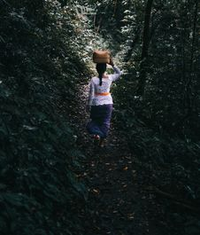 Free Woman Carrying Wicker Bin On Her Head Walking On Forest Trail Stock Photography - 126177232
