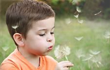 Free Boy Wearing Orange Shirt Blowing On Dandelion Stock Photography - 126177612