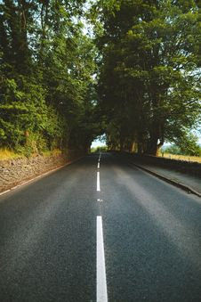 Free Empty Road Between Trees Stock Photo - 126178270