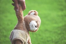 Free Photo Of Person Holding Brown Teddy Bear Royalty Free Stock Photography - 126180737