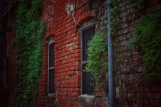 Free Red Brick House Covered With Green Plants Royalty Free Stock Photos - 126180758
